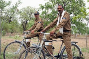 Tigers4Ever Anti-Poaching Patrollers on Bicycles provided by us to make getting around the forest safer and quicker