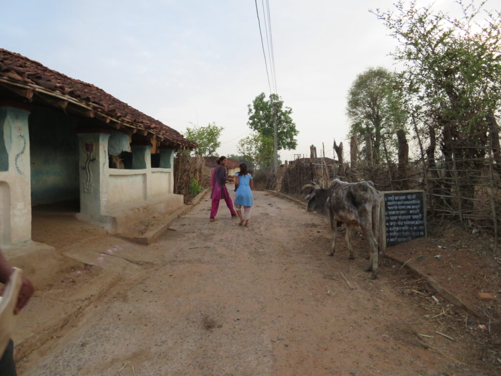 Village life in Bandhavgarh: A cow walks along the side of the road where two young girls are talking outside a house