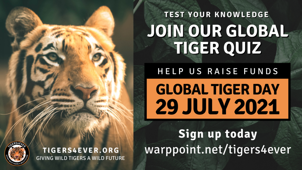 Poster for Global Tiger Day Quiz on 29 July