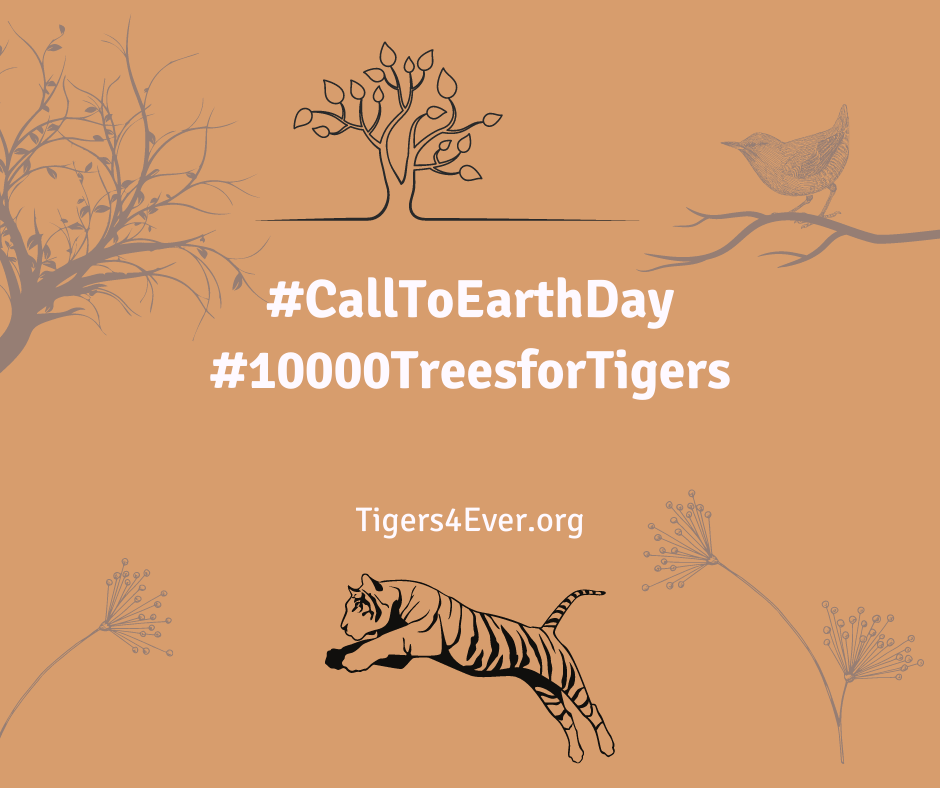 Image with sketches of trees, bird and a tiger; with the campaign messages of Call to earth day and 10000 trees for Tigers